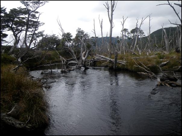 119-paysage