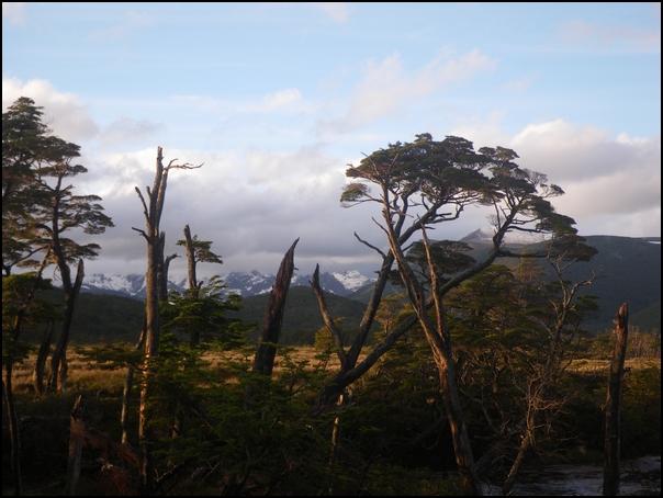 204-paysage