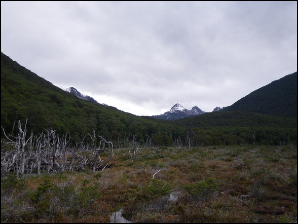 40-paysage